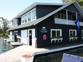 Gorgeous Boathouse! - Hope Island on Lake Jo Cottage & Boathouse - Mactier - rentals