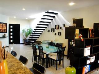 Penthouse 2 bedrooms, private pool, at  5th bis av - Playa del Carmen vacation rentals