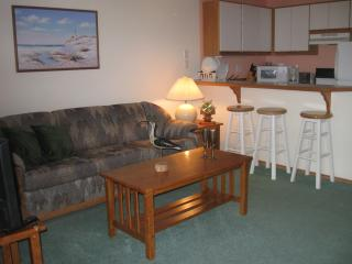 Sandpiper 8 of Friday Harbor (One-bedroom) - San Juan Islands vacation rentals