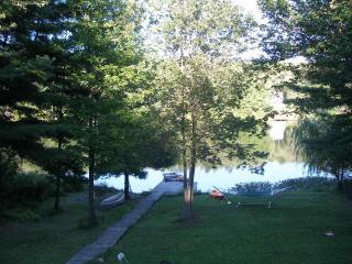 Private Lakefront, Deposit, NY 3BR+/3BA Sleeps 10 - Deposit vacation rentals