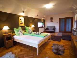 Comfortable 2 bedroom Sibiu House with Deck - Sibiu vacation rentals