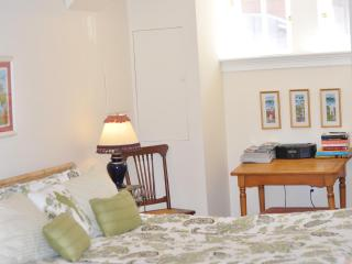 English Basement B&B-UST/14ST/Logan - District of Columbia vacation rentals