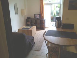 studio et terrasse La Rochelle centre parcs plage - La Rochelle vacation rentals