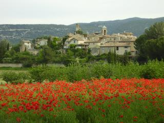 Romantic Condo with Deck and Internet Access - Lourmarin vacation rentals