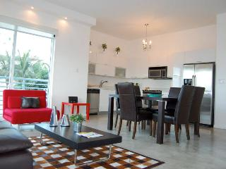 Spectacular Apartment in Downtown Miami - Miami vacation rentals
