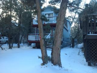 Beautiful Cabin by the National Forest. - Big Bear Lake vacation rentals