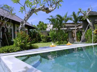 Fabulous Villa Maya, 2bd,rice field - Canggu vacation rentals
