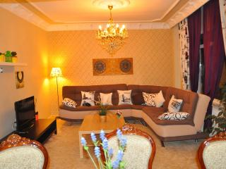 Comfy&bright 140m2 3+1 Apart In Center Of Istanbul - Istanbul vacation rentals