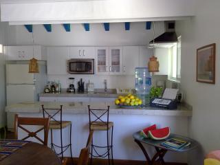 Nice 1 bedroom Condo in Ixtapa - Ixtapa vacation rentals
