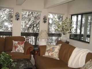 Lake Tahoe, Incline Village, Deluxe 3 bedroom - Incline Village vacation rentals