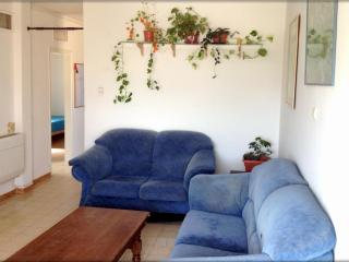 Apartment near Ben Gurion University - Beersheba vacation rentals