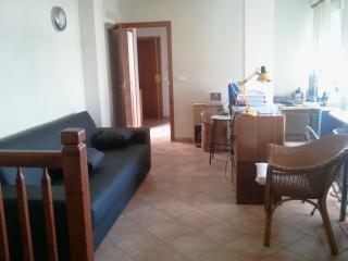 Come to Valencia Turia's Garden - Valencia vacation rentals