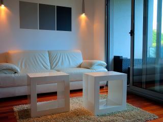 Apartment Filomena with pool & spa - Split-Dalmatia County vacation rentals