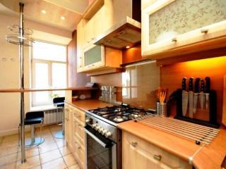 Luxury Spacious City Centre Living with IR-Sauna - Saint Petersburg vacation rentals