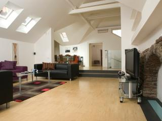 Karlova 3bedroom loft with terrace, Old Town - Prague vacation rentals