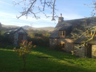 18th Century Hill Farm Cottage - Brecon vacation rentals