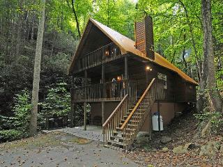 2 bedroom House with Deck in Gatlinburg - Gatlinburg vacation rentals
