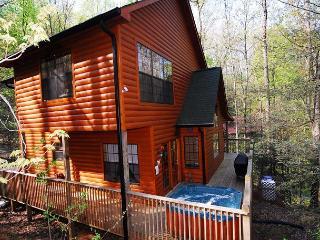 1315 Leave It Behind - Gatlinburg vacation rentals