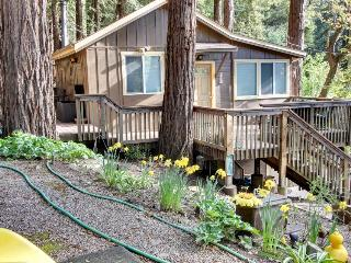 Secluded, dog-friendly mountain cabin w/jungle gym, deck, outdoor firepit & more - Felton vacation rentals