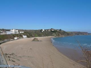 Holiday Cottage - 1 Royal Victoria Court, Tenby - Tenby vacation rentals