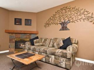 Super location, Marketplace Lodge in Whistler Village - British Columbia Mountains vacation rentals