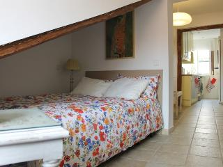 Central newly renovated and cozy apartment - Madrid vacation rentals