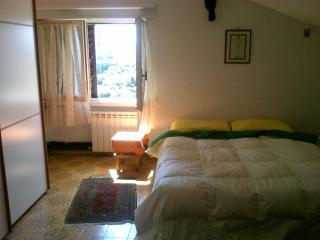 torvaianica  vicino zoomarine,roma,ostia ,outlet - Anzio vacation rentals