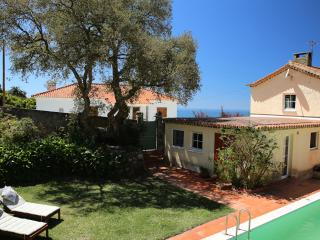 Villa in Sintra Natural Park: pool garden country - Sintra vacation rentals