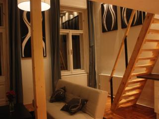 Designer made luxury apt citycentre - Budapest vacation rentals