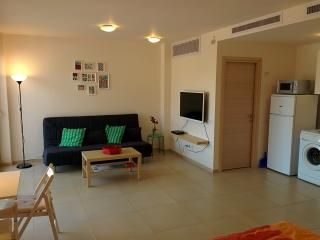 Brand New Studio Apt @ City Center - Jerusalem vacation rentals
