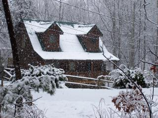 Bear Necessities Cabin  Pet friendly in the Smokys - Sevierville vacation rentals