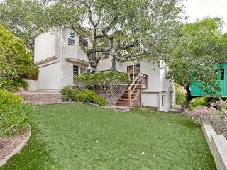 Villa Mariposa - Mountain View vacation rentals