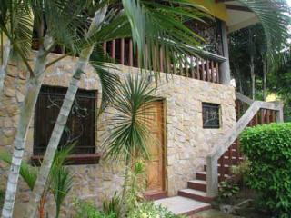 Villa Amarilla - Charming Villa in a great locatio - Manuel Antonio National Park vacation rentals