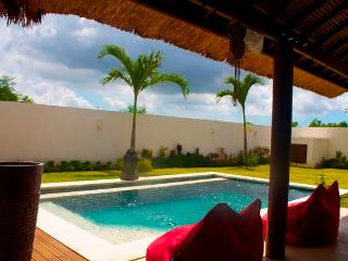 Villa Lucana / Brand new 2bdr - Ungasan vacation rentals