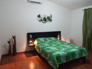 Private house with great nature views, peace and quiet - Los Suenos vacation rentals