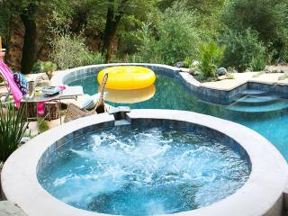 Modern 3br Home W/Pool & Seasonal Creek in Sonoma. - California Wine Country vacation rentals
