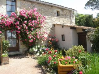 A Romantic cottage for TWO set amoungst vineyards. - Les Verchers-sur-Layon vacation rentals