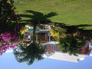 Large  luxurious Plantation home, set in private mature tropical gardens. - Matura vacation rentals