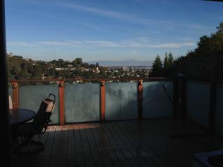 Treetop house in Silicon Valley San Carlos Hills - Half Moon Bay vacation rentals