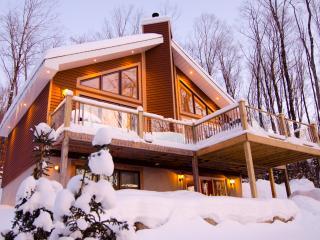 Tremblant - Beautiful retreat (Free Wifi) - Mont Tremblant vacation rentals