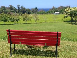 New Ocean View Suite with Stream on Fruit Orchard - Hilo District vacation rentals