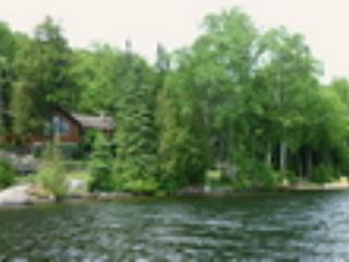 view from Grace Lake - Fernlea cottage - Harcourt - rentals