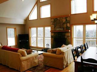 Nice 5 bedroom House in Waterbury - Waterbury vacation rentals