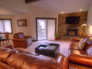 Nice Condo with Internet Access and Television - Vail vacation rentals