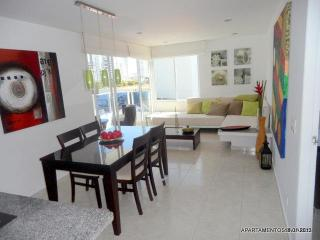 FANTASTIC CONTEMPORARY APARTMENT IN PRIME LOCATION - Bolivar Department vacation rentals