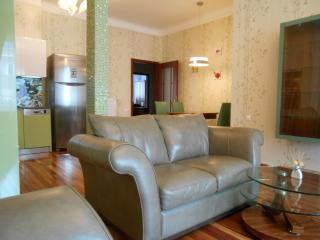 Luxury apartment in the heart of the city - Budapest & Central Danube Region vacation rentals