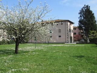 "Bed and Breakfast  ""La Fattoria 1700 "" - San Martino in Freddana vacation rentals"