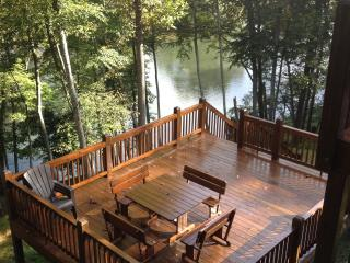 Cabin on the New River! Fish, Canoe, Hike, Enjoy - Lansing vacation rentals