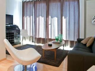 Luxury apartment in the very center - Reykjavik vacation rentals