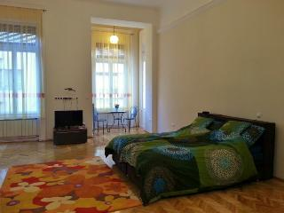 Realy city centre with Budapest Gastronomy guide - Budapest & Central Danube Region vacation rentals